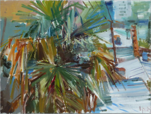 Juliste Palm over the roofs