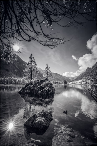 Juliste Magic Forest on Hintersee