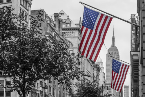 Juliste Flags in New York