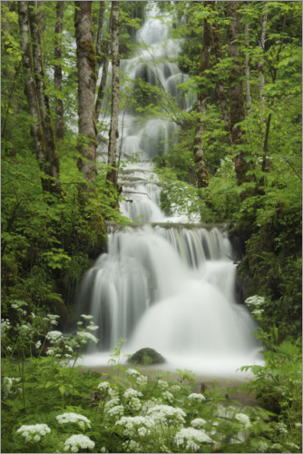 Juliste Waterfall in the forest, France