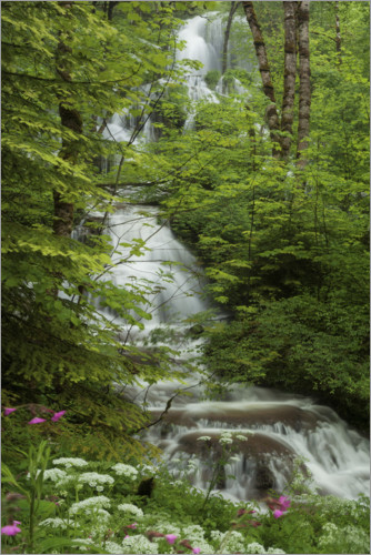 Juliste Waterfall with flowers in France