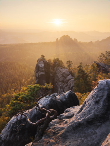 Juliste Evening in the Elbe Sandstone Mountains