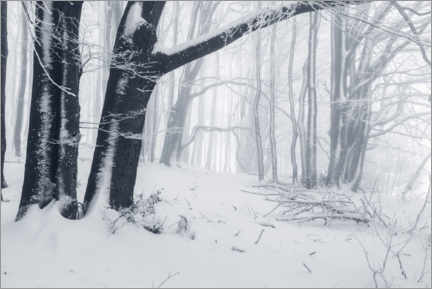 Canvas-taulu  Fog in the snowy winter forest - The Wandering Soul