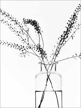 Akryylilasitaulu  Bottle with branches I - Magda Izzard