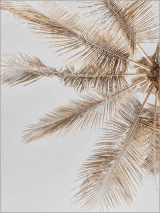 Juliste  Golden Palm VII - Magda Izzard