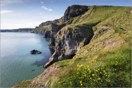 Puutaulu  Calm bay in Ireland by the sea - The Wandering Soul