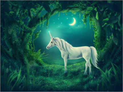 Juliste White unicorn in the forest