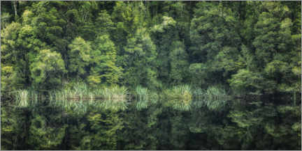 Galleriataulu  Green reflection - André Wandrei