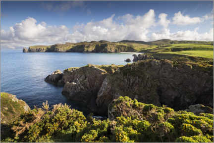 Puutaulu  Ireland's coastline with hills and coves in sunshine - The Wandering Soul
