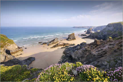 Puutaulu  Beach with flowers and rocks in England - The Wandering Soul