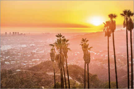 Akryylilasitaulu  Sunset in Griffith Park, Los Angeles