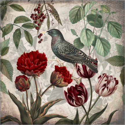 Akryylilasitaulu  Vintage starling with tulips - Andrea Haase