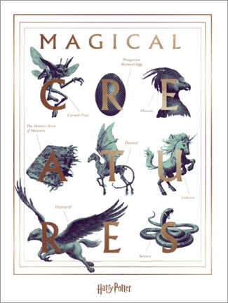 Juliste  Harry Potter - Magical Creatures