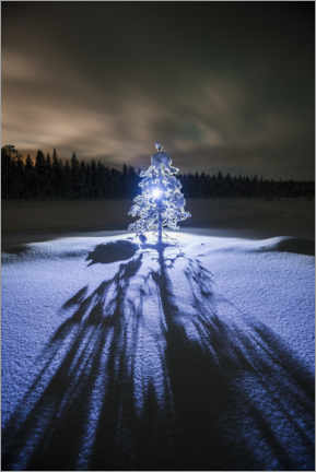 Juliste Lonely tree at night in the winter landscape