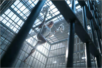 Juliste  Harley Quinn - The cage