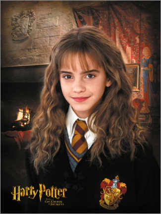 Juliste  Hermione and the Chamber of Secrets