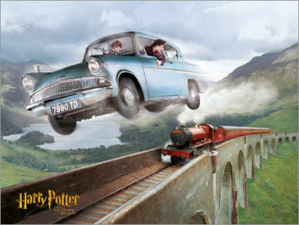 PVC-taulu  Harry and Ron - The Chamber of Secrets