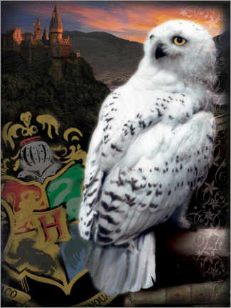 Juliste  The Half-Blood Prince - Hedwig