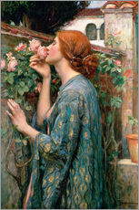 Sisustustarra  The Soul of the Rose - John William Waterhouse