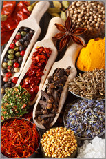 Galleriataulu  Colorful aromatic spices and herbs