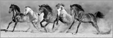 Canvas-taulu  Power of horses - Art Couture