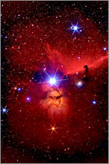 Juliste  Horsehead Nebula in the constellation Orion - MonarchC