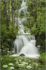 Akryylilasitaulu  Waterfall in the forest, France - Tobias Richter