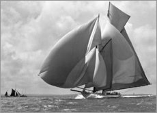 Canvas-taulu  Sails in the wind