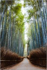 Juliste Bamboo forest in Kyoto