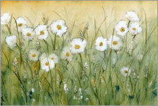 Juliste Daisies in spring I