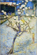 Canvas-taulu  Blossoming pear tree - Vincent van Gogh