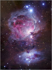 Sisustustarra  The Orion Nebula - Robert Gendler