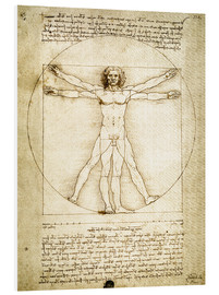 PVC-taulu  The Proportions of the human figure - Leonardo da Vinci