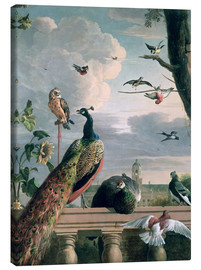 Canvas-taulu  Palace of Amsterdam with exotic birds - Melchior de Hondecoeter