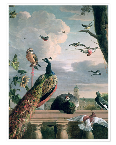 Juliste Palace of Amsterdam with exotic birds