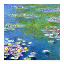 Juliste  Nymphéas - Claude Monet