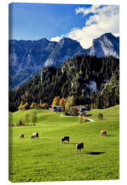 Canvas-taulu  Alps and pasture cows - Ric Ergenbright