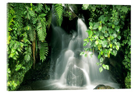 Akryylilasitaulu  Small waterfall in the rainforest - Kevin Schafer