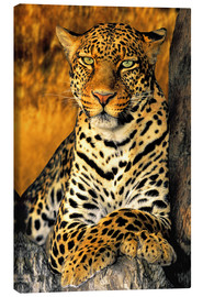Canvas-taulu  Enthroned Leopard - Dave Welling