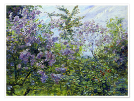 Juliste Blossoming lilac. About 1921