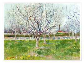 Juliste Blossoming orchard