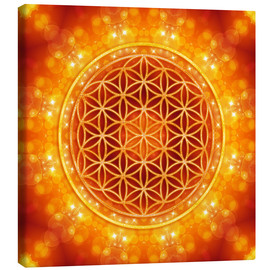 Canvas-taulu  Flower of Life - Golden Age - Dolphins DreamDesign