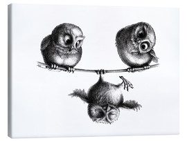 Canvas-taulu  Three owls - high wire act - Stefan Kahlhammer