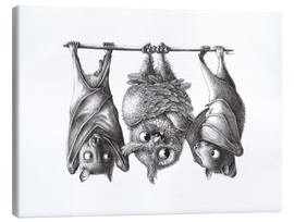 Canvas-taulu  Vampire - Owl and Two Bats - Stefan Kahlhammer