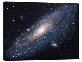 Canvas-taulu  The andromeda galaxy - Robert Gendler