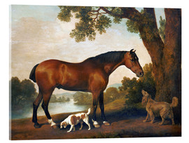 Akryylilasitaulu  Horse and two dogs - George Stubbs
