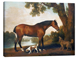 Canvas-taulu  Horse and two dogs - George Stubbs