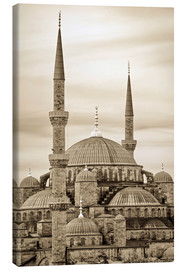Canvas-taulu  the blue mosque in sepia (Istanbul - Turkey) - gn fotografie