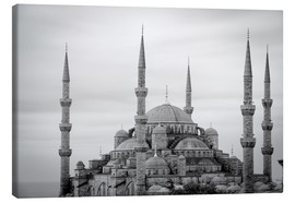 Canvas-taulu  the blue mosque in Istanbul / Turkey - gn fotografie