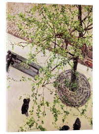 Akryylilasitaulu  Boulevard from above - Gustave Caillebotte